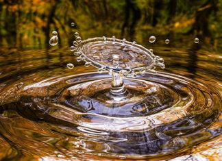 Czy zakup jonizatora wody ma sens